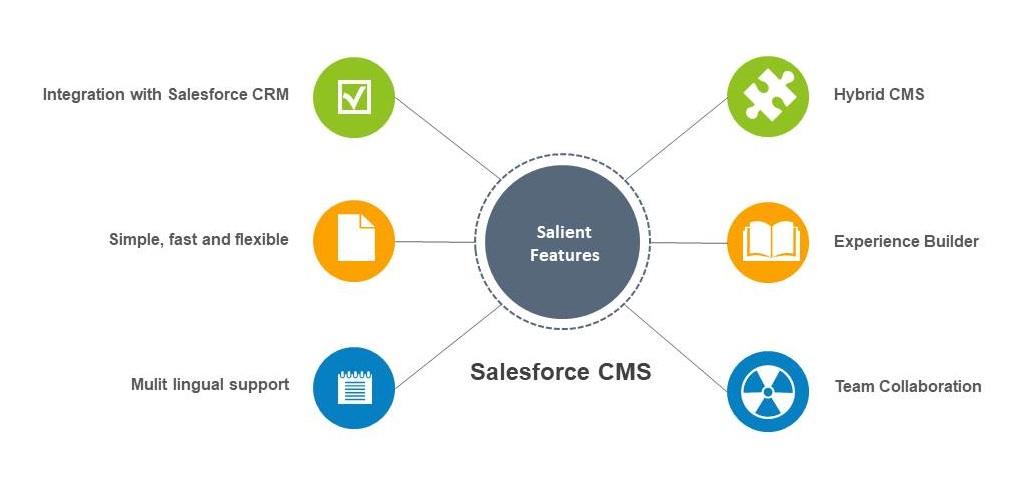 Salesforce Content Management System